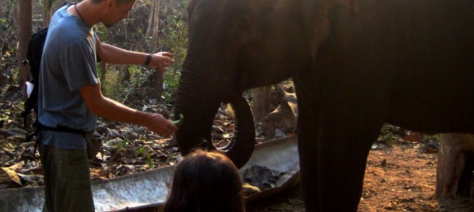¡Ya soy mahout! – Cuidador de elefantes