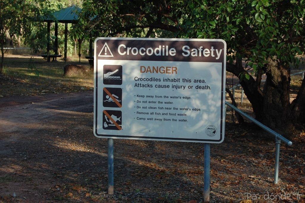 Alerta de cocodrilos