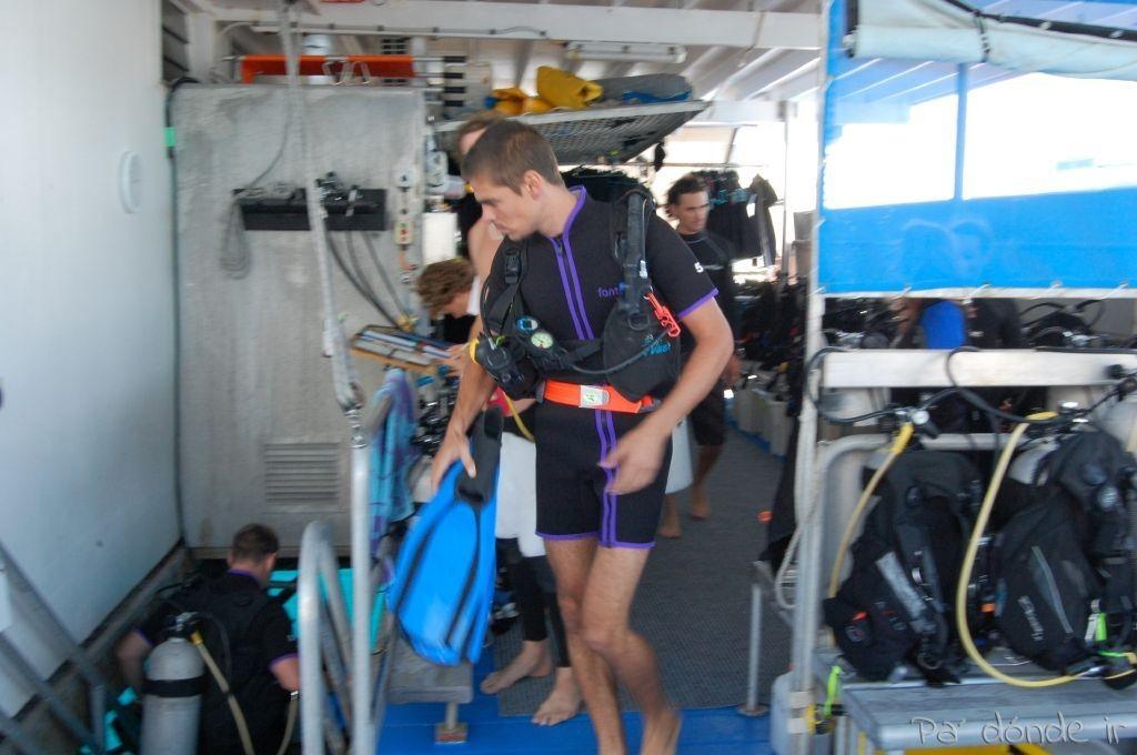 Primera inmersión