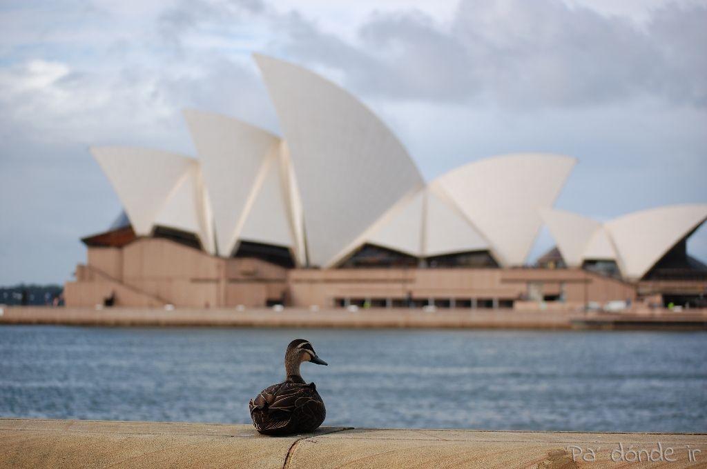 Casa de la Ópera de Sydney 1