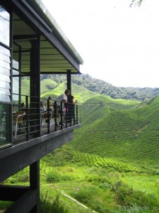 Moderno restaurante sobre plantación de té
