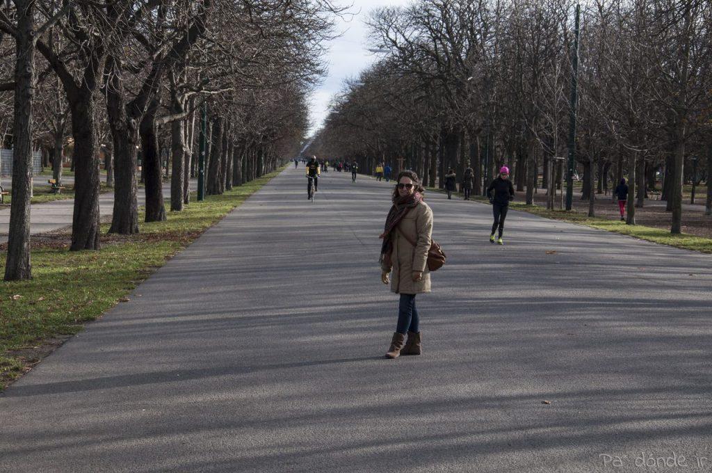 Avenida del parque Prater
